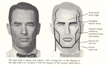 "From the Famous Artists' School course materials. ""The male head is square and angular, with a strong jaw."""